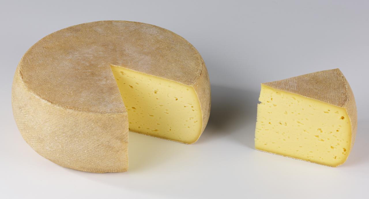 Tomme des Pyrénées dorée.jpg